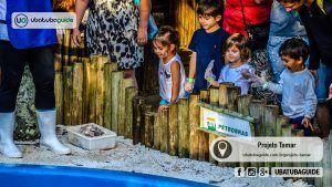 Projeto Tamar Em Ubatuba Tudo Sobre A Base E Centro De Visitantes