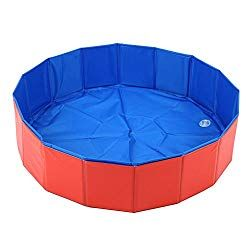 The Ultimate Dog Pool For Sale Large Small 2019 Reviews Guide Dog Pool Dog Bath Tub Dog Swimming Pools