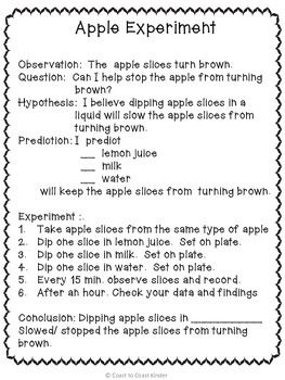 Apples Scientific Method By Coast To Coast Kinder Teachers Pay Teachers Scientific Method Elementary Science Fair Projects 2nd Grade Science Projects