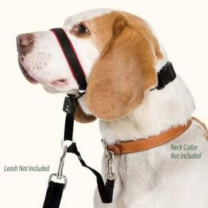 Canny Collar No Pull Dog Head Harness Pulls Nose To Chest Instead