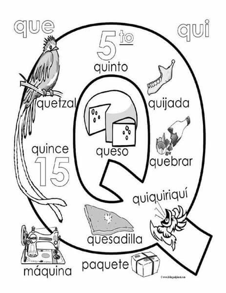 Pin By Sandiely Rb On Abc    Spanish Spanish Alphabet