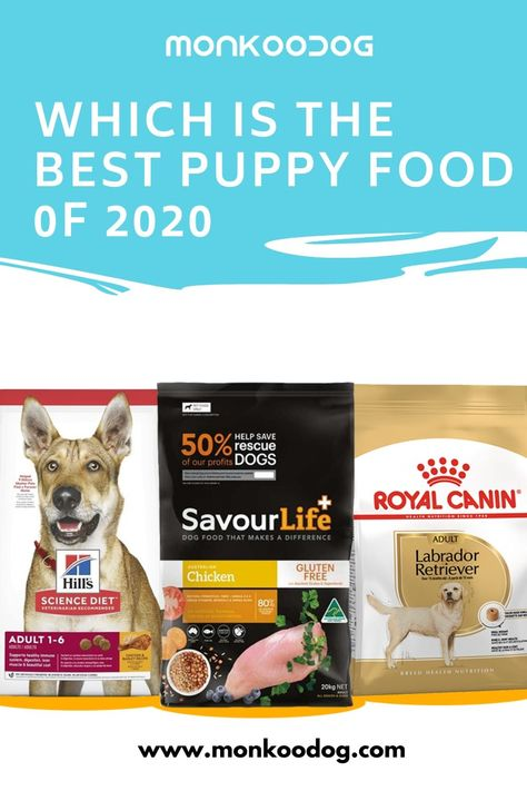 How To Choose The Best Puppy Food Here We Ll Show You The Best