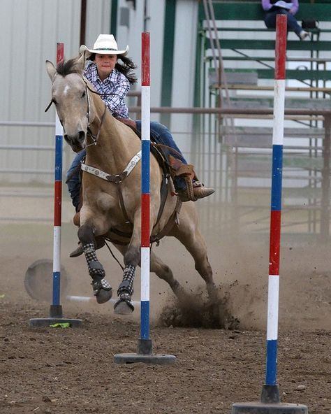 the stretch between poles Cowgirl And Horse, Western Horse Tack, Western Riding, Horse Barns, My Horse, Horse Love, Horse Girl, Western Saddles, Horse Stalls