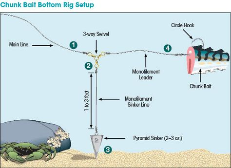 Saltwater Rigging Basics | New Hampshire Saltwater Fishing Digest | eRegulations.com