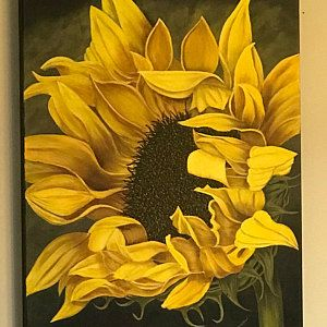 Painting On Canvas Acrylic Painting Flower Landscape Sunflower