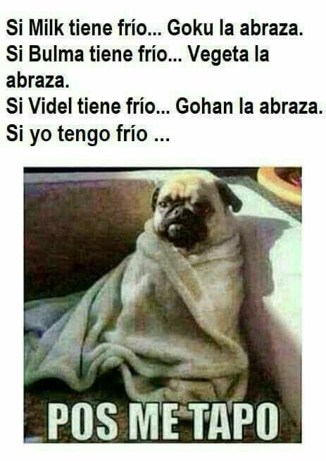 Memes Mexicanos Memes Funny Spanish Memes Book Memes