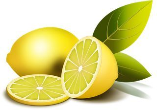 Dibujos De Limon Para Imprimir Fruit Illustration Fruit Fresh Lemons