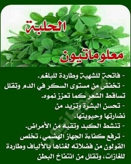 فوائد الحلبه Self Care Activities Fenugreek Herbs