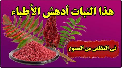 هذا النبات أدهش الأطباء متوفر في كل منزل ولديه قدرة مذهلة في التخلص من Red Peppercorn Food Peppercorn