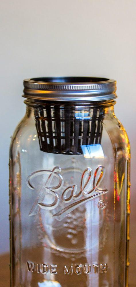 DIY Mason Jar: Non-Circulating Hydroponics (AKA the Kratky method)