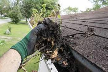 How To Clean Gutters From A Ladder Or Ground Level And Maintain Them Cleaning Gutters Gutters Garden Services