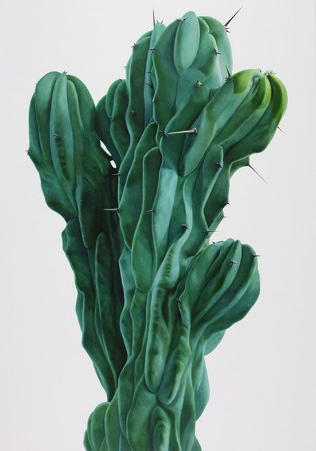 Lee Kwang-Ho Cactus (oil on canvas)