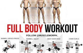 Full Circle Body Fitness Full Body Weight Workout Fitness Body Full Body Workout