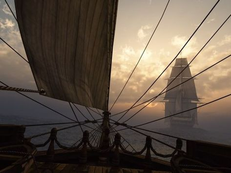 The Arranged Marriage (The Tudor's Series) - Chapter Thirty-One - Page 5 - Wattpad The Wicked The Divine, Black Sails, Pirate Life, Character Aesthetic, Tall Ships, Pirates Of The Caribbean, Story Inspiration, Sailing Ships, Fairy Tales
