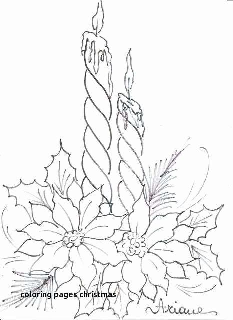 Flower Outline Drawings Lovely Jasmine Flower Outline Drawing
