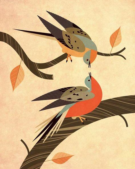 Scott Partridge - illustration - passenger pigeons