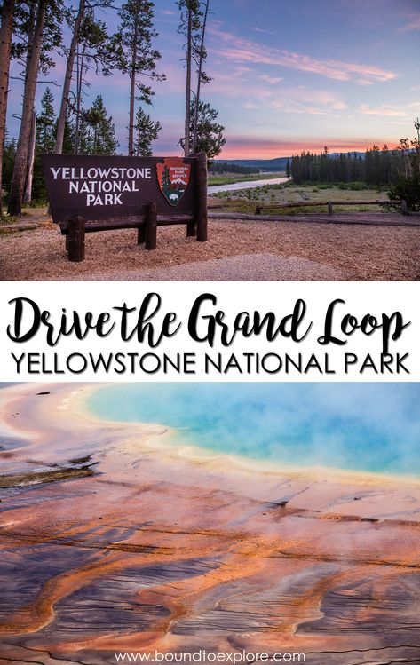Read about our epic day doing the Yellowstone Loop Drive. Learn about driving times, distances, and the best things to see in Yellowstone along the way. Visit Yellowstone, Yellowstone Vacation, Yellowstone National Park, Grand Teton National Park, West Yellowstone Montana, Wyoming Vacation, Vacation Trips, Vacations, National Parks Usa