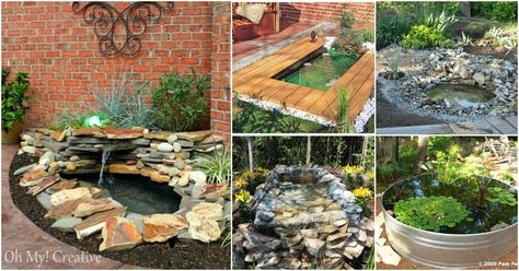 15 Budget Friendly DIY Garden Ponds You Can Make This