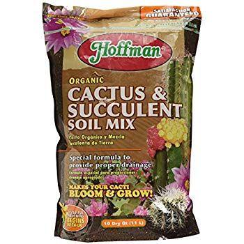 Hoffman 10404 Organic Cactus and Succulent Soil Mix 2-Pack 4 Quarts