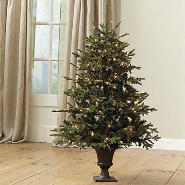 Christmas Trees Ballard Designs Frasier Fir Fir Tree Pre Lit Christmas Tree