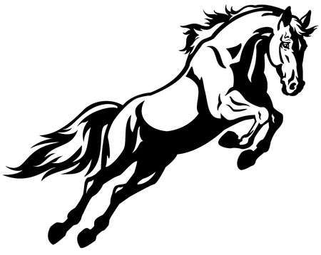 Jumping Horse Black And White Picture Isolated On White Background Horse Rearing Horse Tattoo Horse Jumping