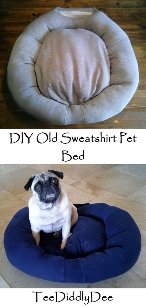 Diy Old Sweatshirt Pet Bed Chihuahua
