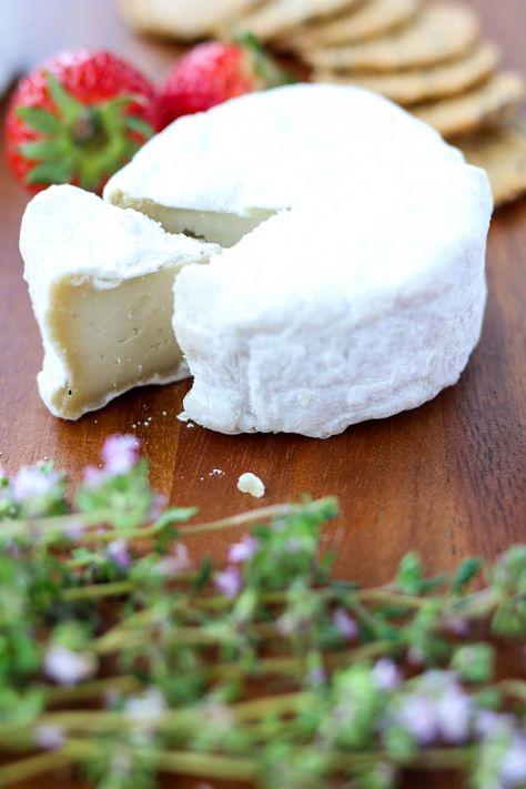 Cultured Aged Vegan Cheese Vegan Cheese Cheese Vegan Gluten Free Recipes