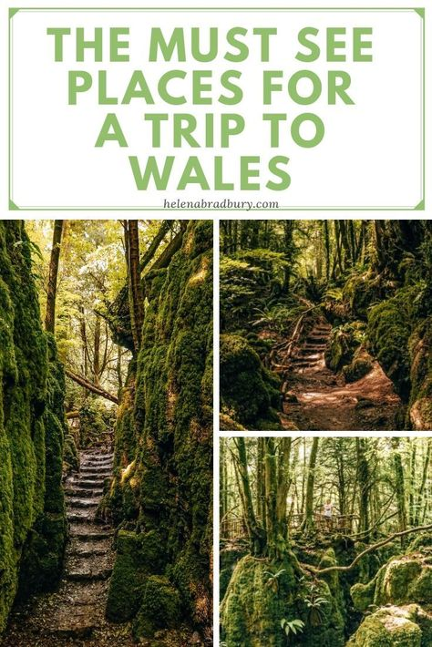 The must-see places for a trip to Wales — Helena Bradbury Beautiful Places To Visit, Cool Places To Visit, Places To Travel, Snowdonia National Park, Uk And Ie Destinations, Shell Island, Forest Of Dean, Visit Wales, Pembrokeshire Coast