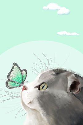 Cat Kisses Butterfly Good Morning   Cat illustration, Morning cat, Cat  background