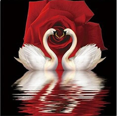 5D DIY Diamond painting. Swan Pair against Red Rose. Square drill, 4 kit sizes available. Extremely limited inventory.