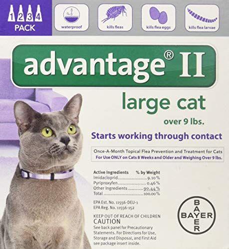 Advantage Ii Large Cat 4 Pack Cat Fleas Flea Treatment Large Cats