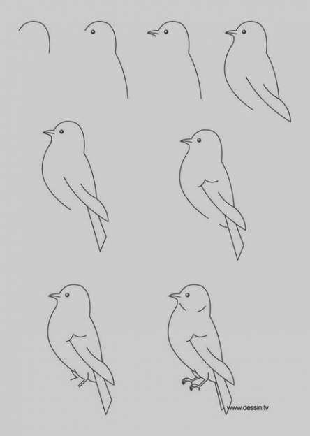 Best Drawing Easy Ideas Step By Step 22 Ideas Step By Step Sketches Easy Drawings Painting Art Lesson