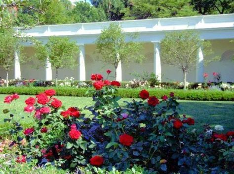 See Photos And Learn About The White House Gardens