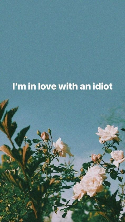 "White rose flower and love quotes ""I am in love with an idiot"" wallpaper for iphone. #floweraesthetic #flowerwallpaper #flowerquotes #lovequotes"