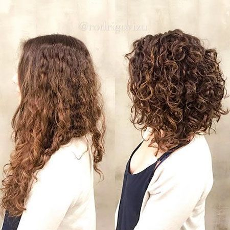 28 Haircuts For Short Curly Hair 28 Haircuts For Short Curly Hair Bunhairstyles C In 2020 Curly Hair Styles Haircuts For Curly Hair Curly Hair Styles Naturally