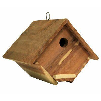 Arbrluxe Wren 7 In X 6 In X 7 In Birdhouse Wayfair Bird Houses Bird Houses Diy Bird Houses For Sale