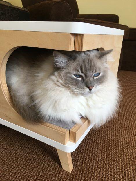 Purrfur Retro Modern Cat House Product Review Cats Cat Condo Retro