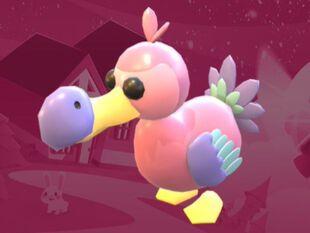 Pink Dodo Adopt Me Wiki Fandom In 2020 Pink Bird Pink Dodo
