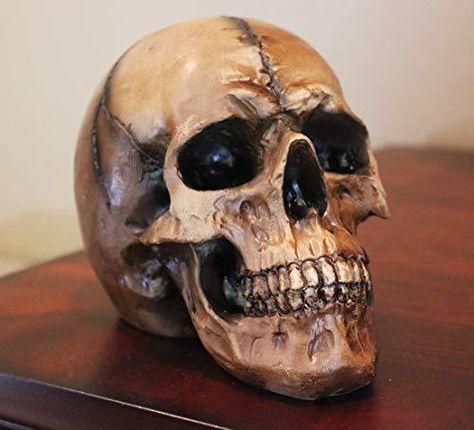 Seraphic Halloween Skulls - 1 / Brown
