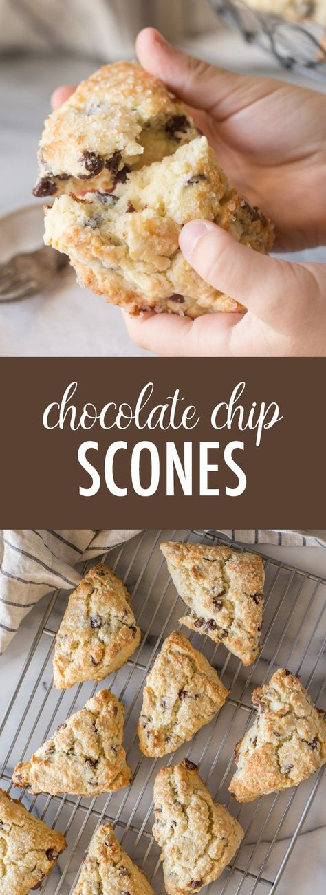 These Chocolate Chip Scones are so irresistibly delicious with their buttery, flakey layers and sweet, crunchy topping. Can't wait to make them again! #chocolatechipscones #scones #chocolatechip #chocolate #breakfast #dessert