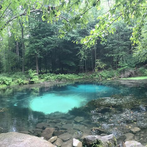 14 Surreal Places In Pennsylvania You Won't Believe Exist - Narcity Pennsylvania is full of places you'd expect to see only in dreams West Texas, Vacation Places, Vacation Spots, Vacation Days, Cruise Vacation, Day Trips In Pa, The Places Youll Go, Cool Places To Visit, New Mexico