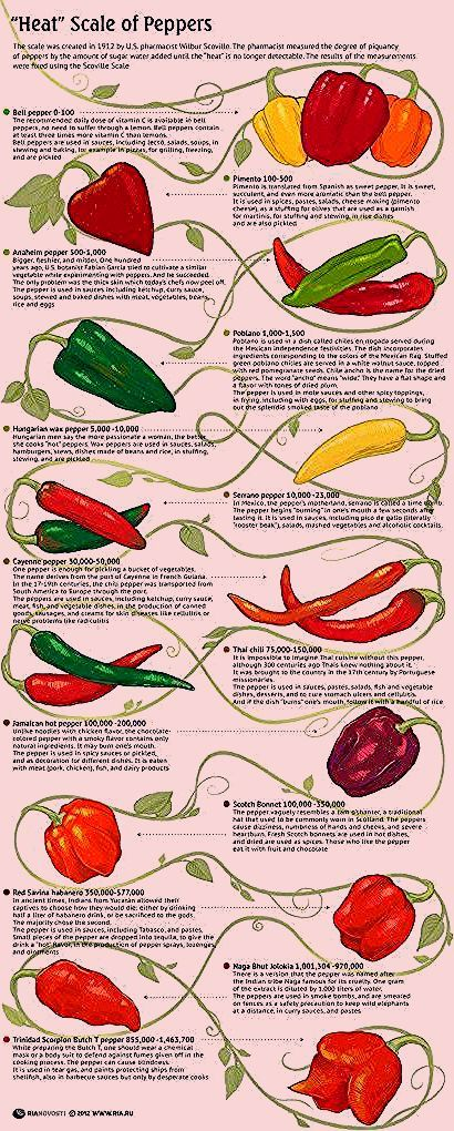 Pin By Howard Bogisich On 야채 요리 Stuffed Peppers Stuffed Hot Peppers Types Of Peppers