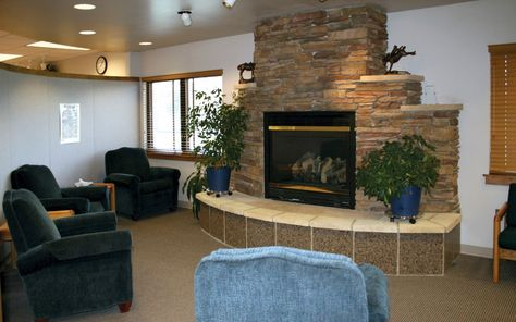 Fireplace Insert Short Wall   Google Search