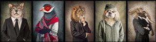 تفســــــير الاحــــــــــلام نكاح الحيوانات في المنام Animal Mural Pet Clothes Animal Art