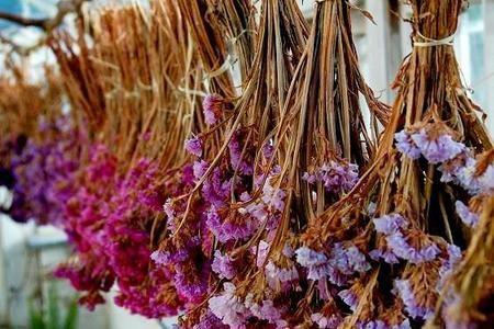 Rosliny I Kwiaty Na Suche Bukiety Dried Flowers Flowers Blooming Flowers