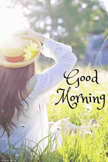 Best Good Morning Hd Images Wishes Pictures And Greetings Good Morning Flowers Good Morning Images Morning Images