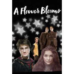 A Flower Blooms Harry Potter Fanfic Harry Potter Stories Female Harry Potter Harry Potter Oc