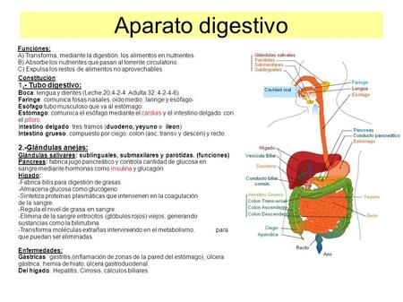 Pin En Biologia