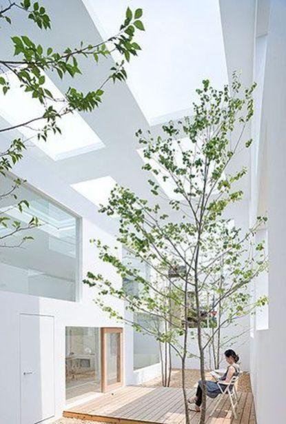 Amazing Artistic Tree Inside House Interior Design 45