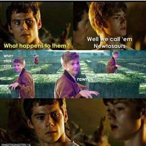 The Maze Runner Funny Memes - 1 - Wattpad